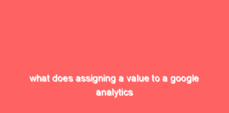 what does assigning a value to a google analytics goal enable 2 14939